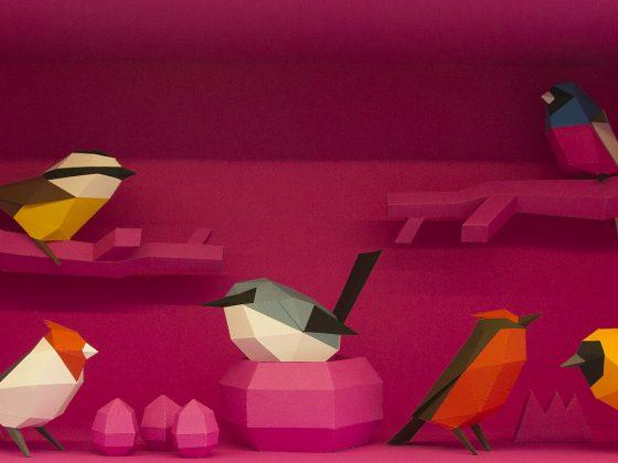 Aves para armar de Guardabosques