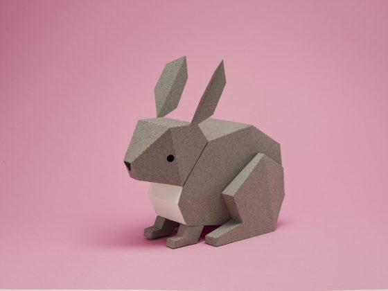Conejo para armar de Guardabosques
