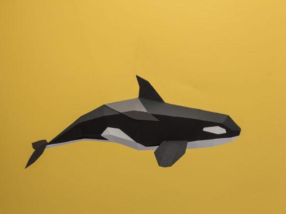 Orca para armar de Guardabosquesen Tienda Malba